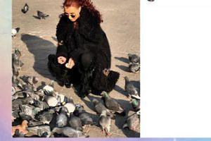 Eva Minge karmi gołębie