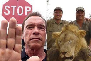 """Schwarzenegger walczy z myśliwymi! """"To nie jest zajęcie dla facetów z jajami!"""""""