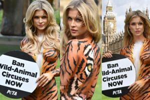 Prawie NAGA Dżoana pomalowana w tygrysie paski nie zgadza się na wykorzystywanie zwierząt w cyrku (ZDJĘCIA)