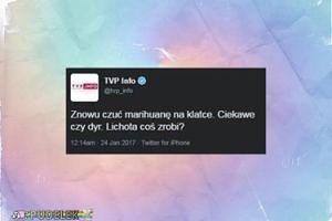WPADKA TVP Info na Twitterze!