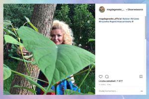 Magda Gessler tuli się do drzewa