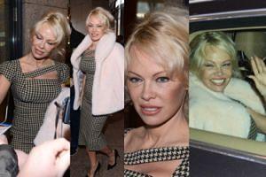 Pamela Anderson z cienkimi brwiami przyleciała do Polski (ZDJĘCIA)