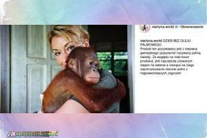 Martyna Wojciechowska z orangutanem walczą z olejem palmowym