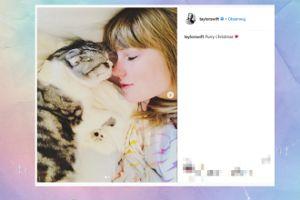 Taylor Swift tuli swoją kicię