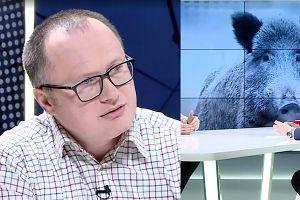 """Poseł PiS proponuje ODSTRZAŁ ŻURAWI. """"Jest gatunkiem chronionym!"""""""