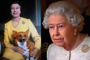 """Nie żyje ostatni pies corgi Elżbiety II. """"Królowa jest ZDRUZGOTANA"""""""
