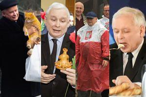 Patriota, dżentelmen, miłośnik kotów - Jarosław Kaczyński kończy dziś 70 lat (ZDJĘCIA)