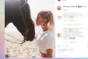 Maffashion przeżywa bliskie spotkanie z koniem