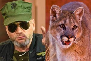 """Krzysztof Rutkowski znów tropi dzikie zwierzę. """"Znajdę pumę zanim zrobi komuś krzywdę"""""""