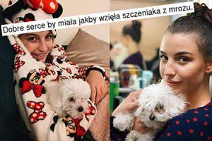 """Julia Wieniawa kupiła psa z hodowli? """"Dobre serce by miała, jakby wzięła szczeniaka z mrozu"""""""