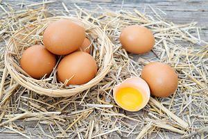 erekcja jajka przepiórcza