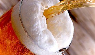 Polacy pokochali piwo. Roczne spożycie przekroczyło 100 l na osobę