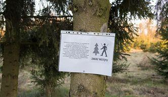 Zakaz wstępu do lasów. RPO: zbędny i zbyt daleko idący