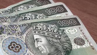 Kursy walut. Dwie polskie instytucje w centrum uwagi