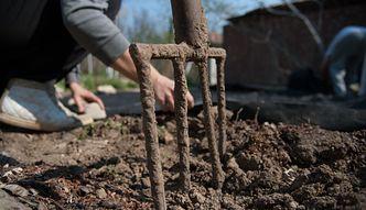 Czy ogródki działkowe będą drożeć?