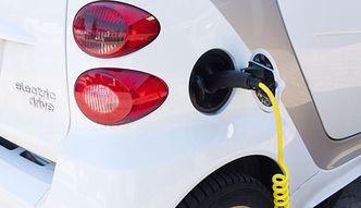 Klapa rządowego programu dopłat do aut na prąd. Po pieniądze nie zgłosił się prawie nikt