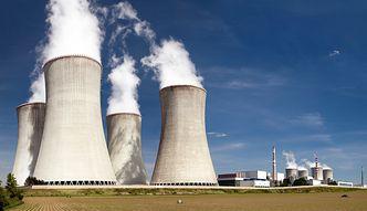 Polska szuka partnera do budowy elektrowni atomowej