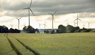 Sejm za nowelizacją ustawy o OZE, poszerzającą definicję drewna energetycznego