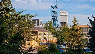 GUS: Produkcja rudy miedzi spadła o 11,3% r/r w styczniu