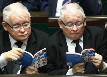 """Podczas ważnego głosowania Jarosław Kaczyński czyta... """"ATLAS KOTÓW"""" (FOTO)"""