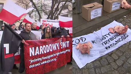 Kontrmanifestacja narodowców Przynieśli świńskie łby
