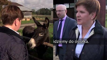Beata Szydło na wsi Krowy za nami patrzą Chodźmy do osiołka CZEŚĆ OSIOŁEK