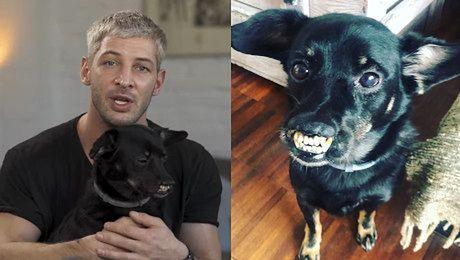 Poznaj mojego psa Niezwykła przyjaźń Leszka Stanka i jego psa Vaderka Jest czworonożnym dowodem na to że warto inwestować uczucia w znajdki