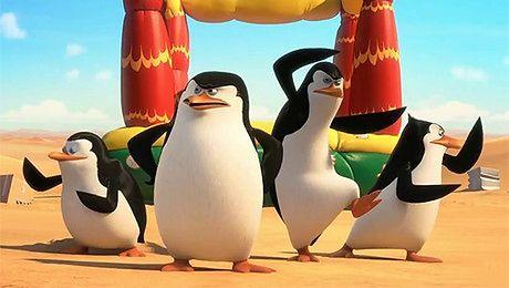 Zwiastun Pingwinów z Madagaskaru