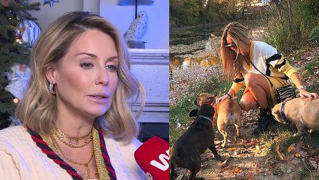 Rozenek apeluje Albo kupujmy psy ze sprawdzonych hodowli albo adoptujmy