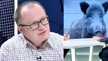Poseł PiS proponuje ODSTRZAŁ ŻURAWI Jest gatunkiem chronionym