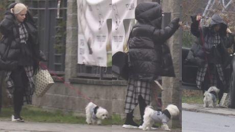 Margaret przygotowuje się do Sylwestra Oddała psa do hotelu dla zwierząt…