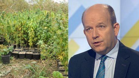 Minister zdrowia ostrzega Marihuana jest niebezpiecznym narkotykiem