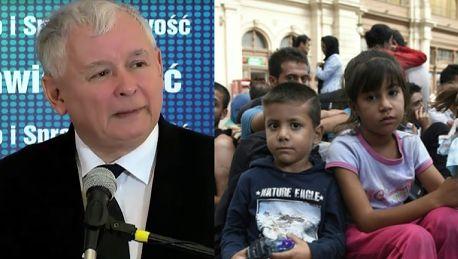 Kaczyński o imigrantach Są już objawy cholery pierwotniaki pasożyty