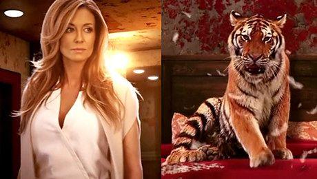 Karaluchy i tygrys w zwiastunie Piekielnego hotelu