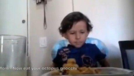 5 letni wegetarianin TO SĄ ZWIERZĘTA nie powinniśmy ich zjadać