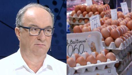 Czarzasty gada jak potłuczony Mam tyle jajek że się ze wszystkimi podzielę Jajka są silne będą ładne kurczaczki