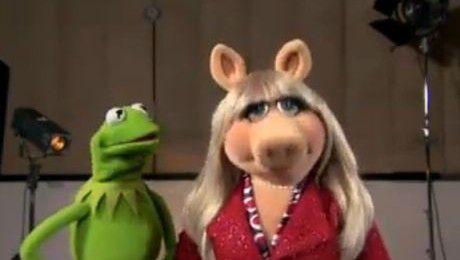 Muppety GRATULUJĄ Kate i Williamowi