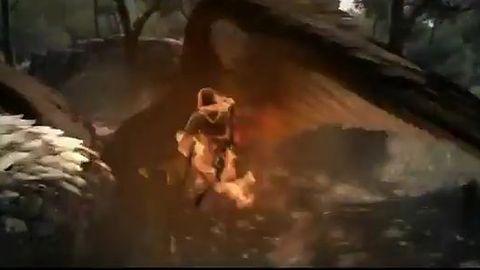 Dragon's Dogma - smoki, hydry, gryfy i inne atrakcje