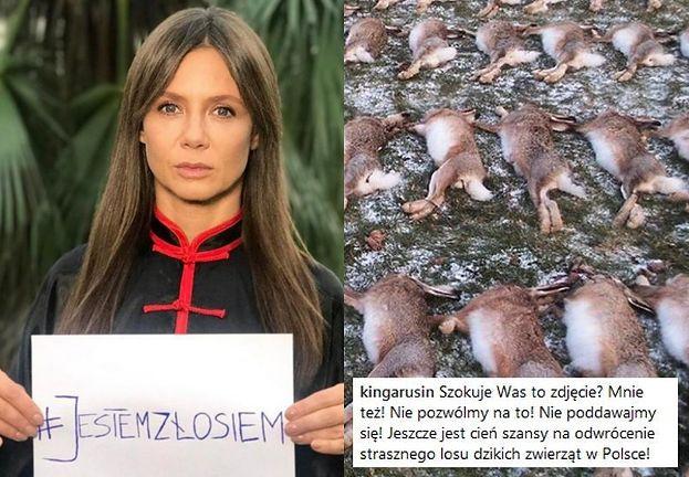 """Rusin nie poddaje się w walce z myśliwymi: """"Szyszko nadal niszczy polskie środowisko!"""""""