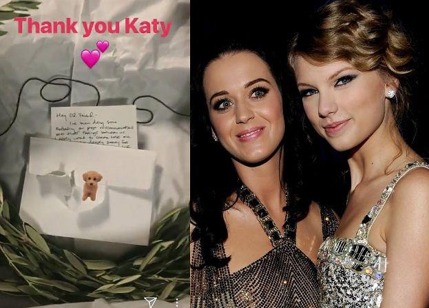 Katy Perry wysłała Taylor Swift GAŁĄZKĘ OLIWNĄ! Pogodziły się?