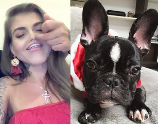 """Deynn i Majewski rozpaczliwie próbują powrócić. Założyli Instagram... własnemu psu. """"Ku*wa przestańcie męczyć go zdjęciami!"""""""