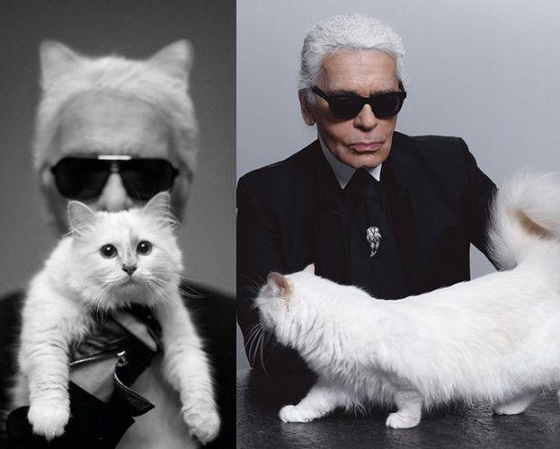 """Karl Lagerfeld: """"CHCĘ SIĘ OŻENIĆ Z MOJĄ KOTKĄ!"""""""