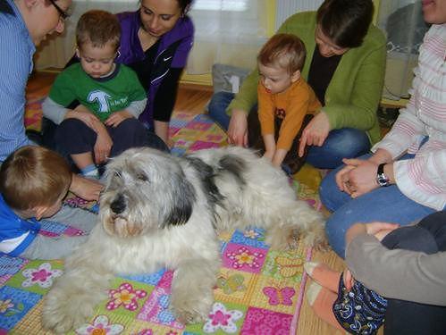 zajęcia w Akademii Twórczego Rozwoju z psem