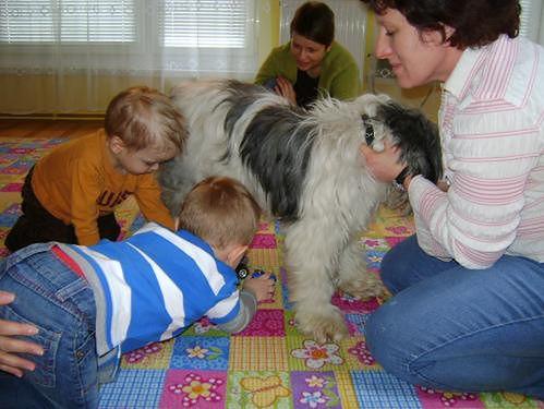 dzieci bawią się z psem