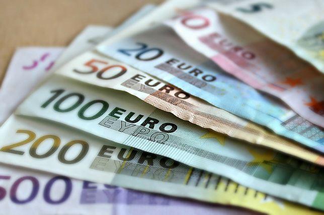 Strefa euro. Ekonomista: doradzałbym polskiemu rządowi izolację od euro