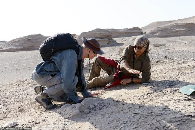 Metody absolutnego datowania skamielin
