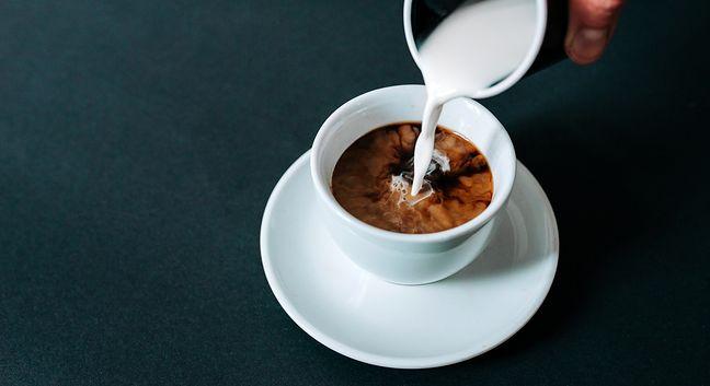 Ile można schudnąć pijąc codziennie tylko kawę