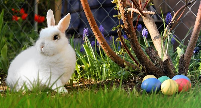 życzenia Wielkanocne Religijne Poważne śmieszne Krótkie