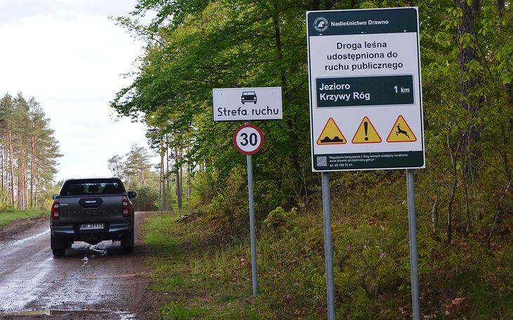 Droga leśna musi być stosowanie oznakowana w jasny i czytelny sposób, by mieć pewność, że można na nią wjechać.
