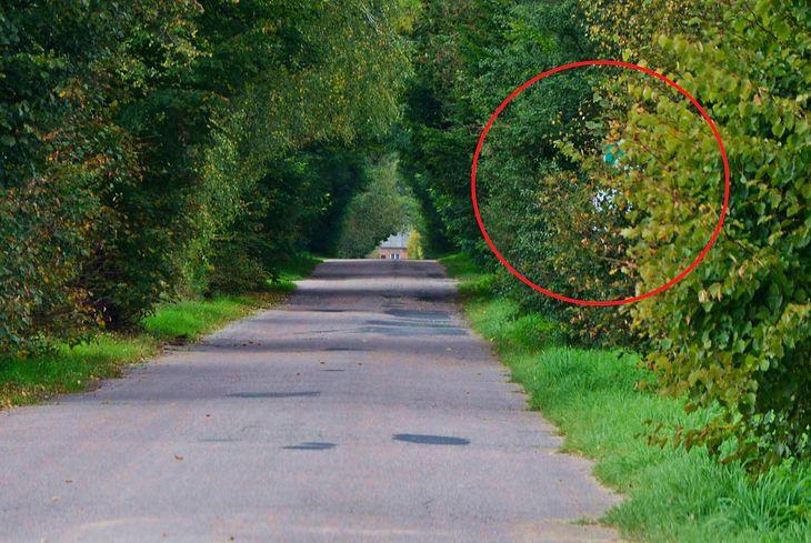 Tam jest znak, ale widać go tuż przed minięciem. Ogranicza prędkość dopuszczalną z 90 do 50 km/h